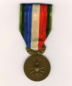 Image de Médaille des Vétérans de l'armée de terre et mer (Casque gauche)