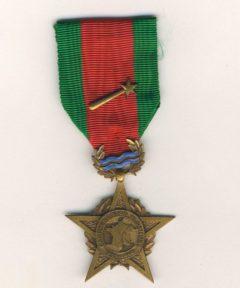 Image de Médaille Campagne Rhin et Danube 1944-1945