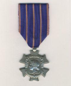 Image de Médaille Services Civiques 1914-1918 L.R.N.F. (Arg)